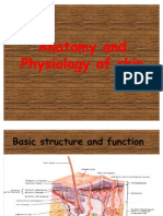 Anatomy&Physiology of Skin