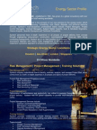 Systech International Energy Flyer - Risk Management - Project Management - Training Solutions