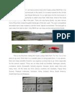 Bird Park Report