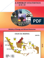 Indonesia Energy Statistic Leflet 2010
