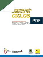 Referentes Conceptuales Reorganizacion Por Ciclos