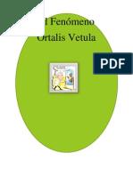 EL FENÓMENO ORTALIS VETULA (El Fenómeno Chachalaca) de Dr. Salvador Borrego