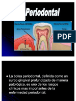 BOLSA_PERIODONTALl