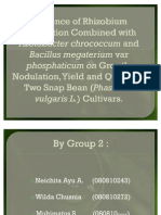 Influence of Rhizobium Inoculation Combined With Azotobacter Chrococcum