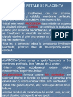 Anexele Fetale Si Placenta
