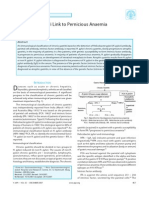 Helicobacter Pylori Link to Pernicious Anaemia