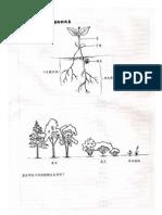 東海植物分類學-課程基本資料
