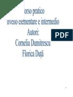 Curs Practic 2009-2010