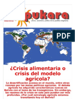 Pukara-60. Crisis Ali Men Aria