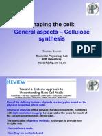Plant Cell Biol Modul3 Rausch SS10