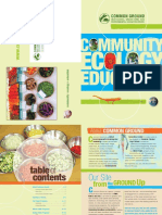 Common Ground Programs New Haven