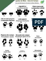 Guia de Pegadas Serra Do Palmital