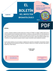 boletin_inal_7