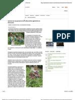 (Noticia Edu Amb) Relato de un proyecto de educación agrícola en Orocovis (Prensa Com 2011)