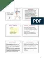 Presentacion Anatomia Del Sistema Respiratorio