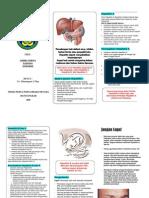 Leafleat Hepatitis