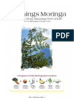 All Things Moringa