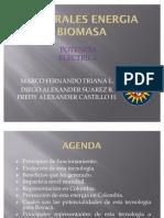 CENTRALES ENERGIA BIOMASA