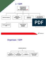 Struktur Organisasi Data & TI Cepu