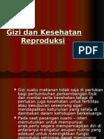 Gizi Dan Kesehatan Reproduksi