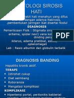 hepATOLOGI