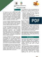 Monografia de La Miel