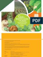 Guia de identificacion de plagas que afectan a la papa en la zona andina