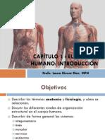 Anatomia y Fisiología - Cap 1