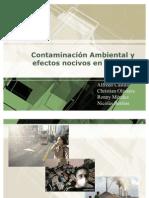 Contaminacin Ambiental y Efectos 2