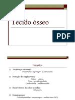 TECIDO OSSEO