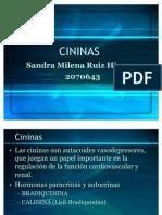 Seminario Hi Per Tension -Cap Cininas