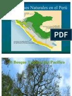 Bosque Trop Del Pac.3.10.