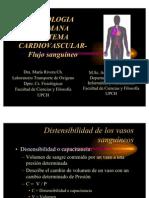 HEMODINAMIA-FLUJO SANGUINEOEnfermeria