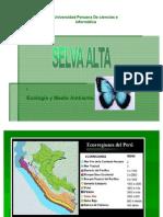 ECOLOGIA SELVA ALTA 3.6.
