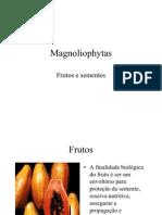 fruto  Slydes
