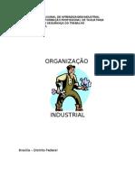 ORGANIZAÇAO_INDUSTRIAL