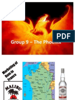 IMM_GROUP9ppt