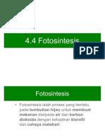 Sc F2 C4.4 Fotosintesis