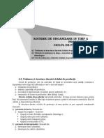 Sisteme de Organizare in Timp a Productiei Ciclul de Productie