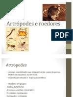 Artrópodes e roedores
