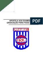 Apostila AOS exameS DE GRADUAÇÃO PARA FAIXA PRETA 2011 II
