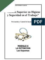 06 - La Extincion-espumas - 2005(Muy Bueno)