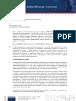 Informe de Auditoria 2010 Web