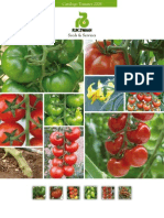 folleto tomate 2008