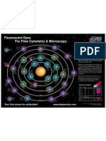 Fluorescent Dyes Poster