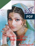 Pakeeza Digest August 2011