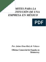 Tramites Constitucion Empresa Mexico