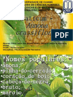Trabalho Annona Crassiflora