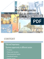 Analysis of Business Opportunities in Different Sector (1)