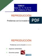 BG 9 reproduccion[2]